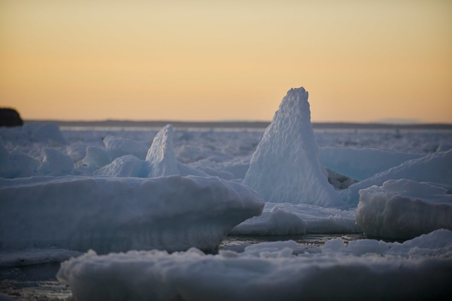 Sea Ice at sunset on Conception Bay