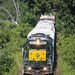 Housatonic Railroad by Brian D Plant