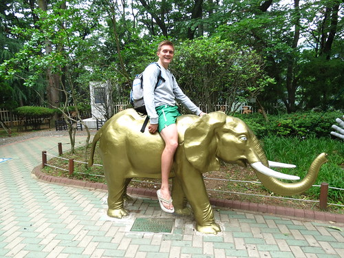 Golden Elephant Ride