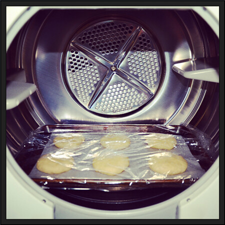 Burger Buns Proofing in the Dryer