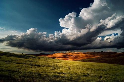 e si mettono li tra noi e il cielo  per lasciarci soltanto una voglia di pioggia by leowincy - not at home
