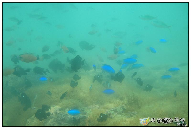 2013歐船長東海休閒漁業_98