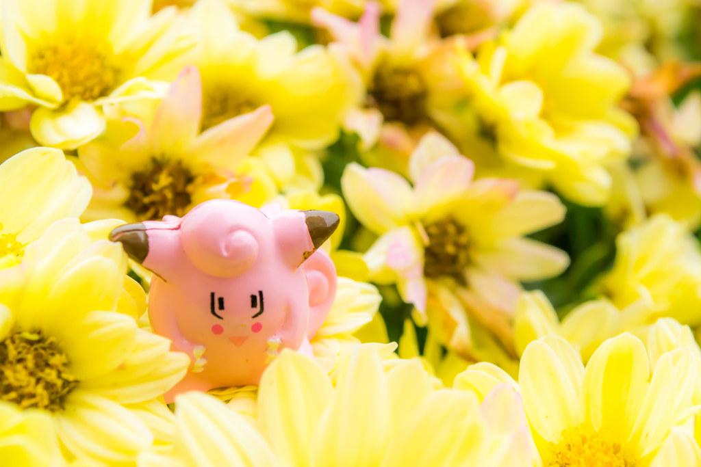 Clefairy nas flores
