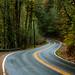 Gordon Creek Road by LukeDetwiler