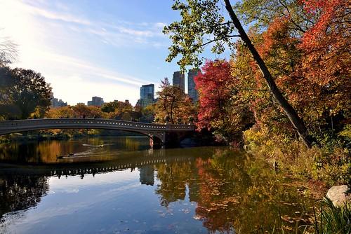 newyorkcity centralpark manhattan nycparks