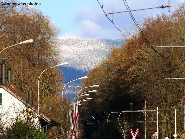 View along the road in Feldbrunnen