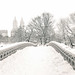 Central Park Winter - Snow on Bow Bridge - New York City by Vivienne Gucwa