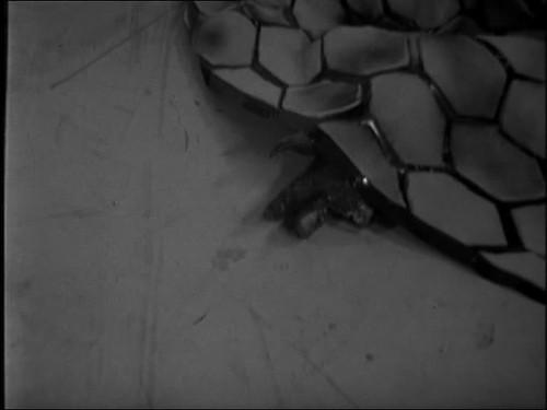 vlcsnap-2013-12-18-11h00m11s118