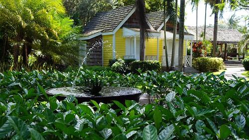 Best Spa Nevis Honeymoon