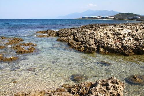 屏東海岸底質多樣性高,包括珊瑚礁。(圖:台灣環境資訊協會)