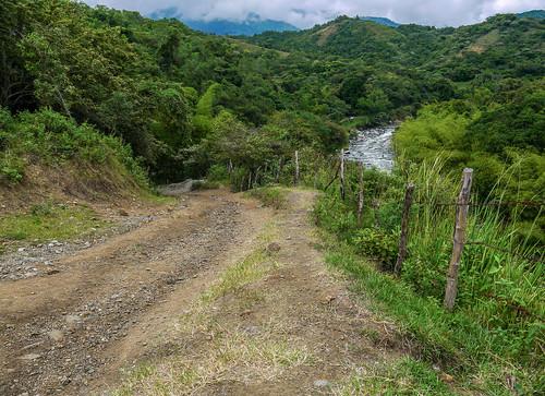 verde green southamerica landscape colombia paisaje valledelcauca riofraile floridavalledelcauca