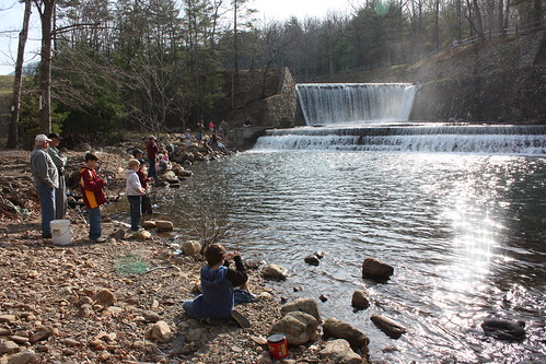 Fishing frenzy at douthat state park for Do kids need a fishing license