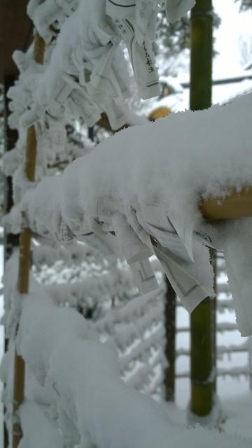 Snowy Omikuji