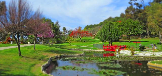 First day of Spring  Ken Hahn Park_2771
