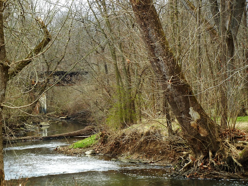 landscape creek tree railroad bridge trestle water park brownsburg indiana 2017 nature whitelickcreek
