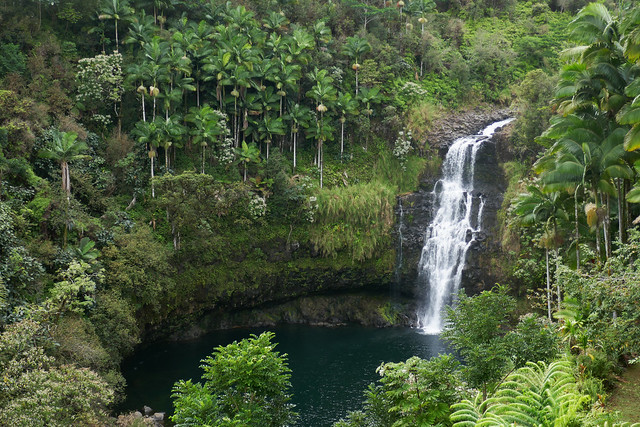 The Falls of Kulaniapia, Panasonic DMC-ZS100