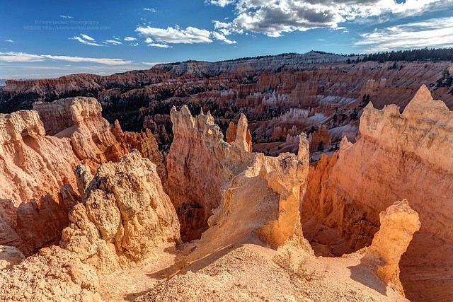 Bryce Canyon Hoodoos in the sunlight