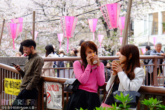 含2018櫻花預測~*炸圖*東京市區賞櫻必來景點 – 中目黑(日比谷線)延綿3.2KM的粉色櫻花,外加一定不能錯過的日式雜貨、小吃、河川步道 @強生與小吠的Hyper人蔘~