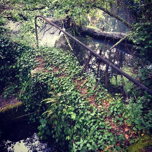 O #rio #Seia no #vale com o mesmo nome, tem sempre, belos, segredos bem guardados...