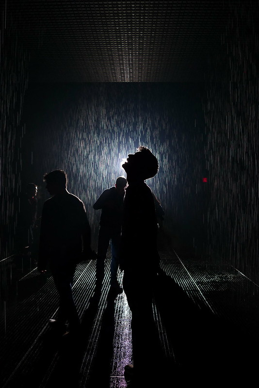 in the rain room