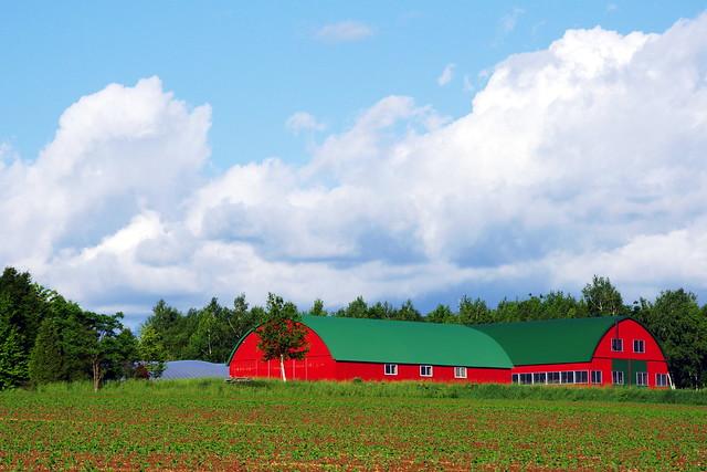 赤い納屋²