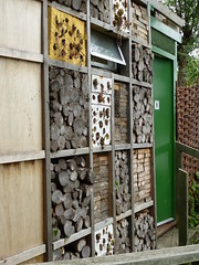 Greenwich Ecology Park - Insect wall
