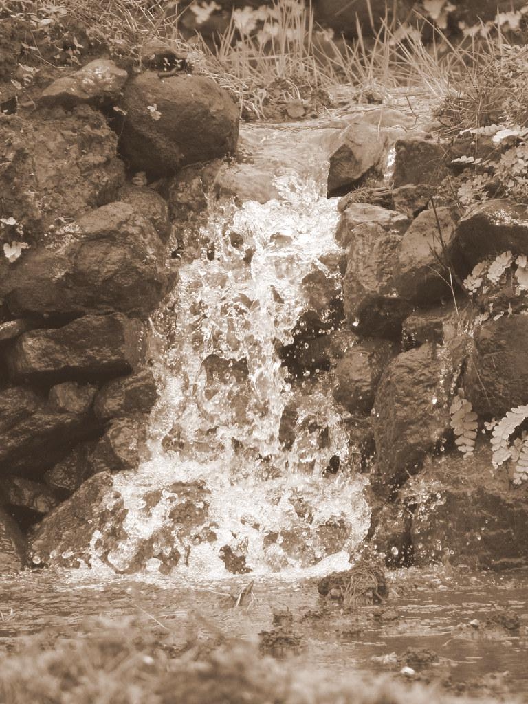 Small Spring Near Palase Waterfall