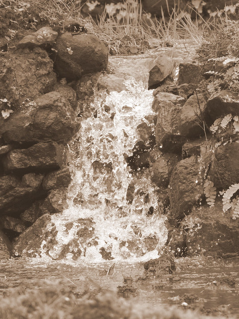 Small Spring Near Palase Waterfall