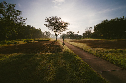 trees sunlight sunrise landscape philippines wideangle jogging ultrawide morningroutine castshadow tarlac capas leadinglines capasnationalshrine tokina1116 personrunning