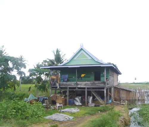 Sulawesi13-Bone-Pare Pare (20)