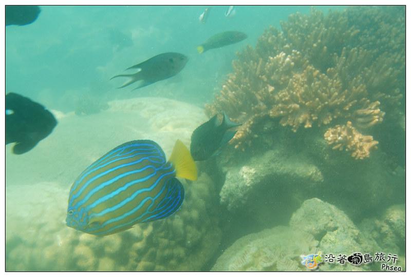 2013歐船長東海休閒漁業_90