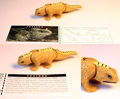 animal figure, reptile, lizard, fauna, dinosaur, cartoon,