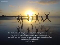 la_vida_no_es