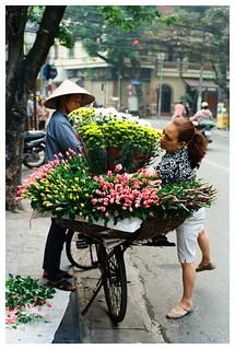 Hàng hoa
