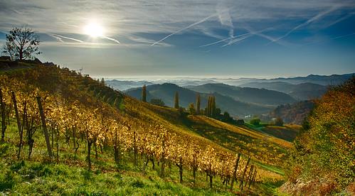 autumn fog österreich nikon nebel herbst vineyards nikkor hdr vr afs steiermark weinberge südsteiermark 1685 d7100 southstyria ratschanderweinstrase
