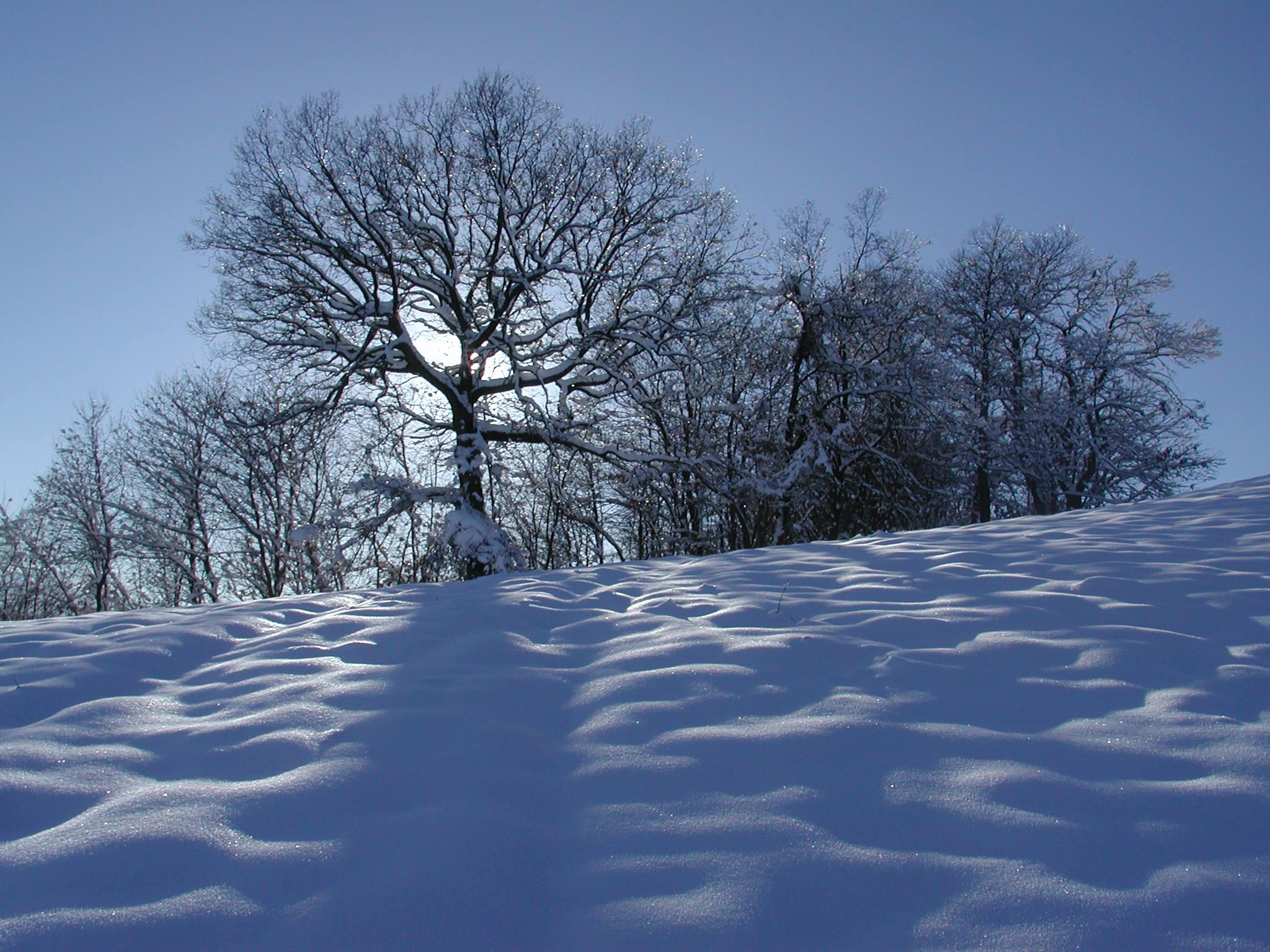15. Paisaje invernal en los Apeninos regianos. Autor, Paolo di Reggio