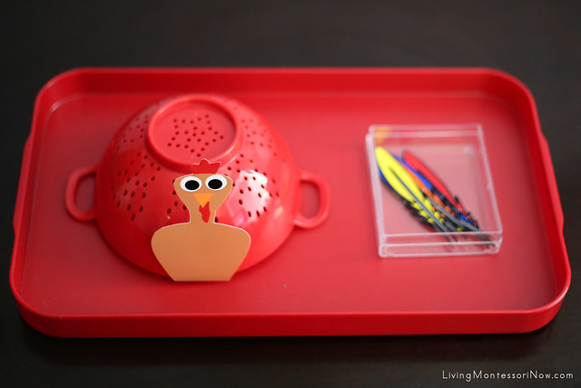 Turkey Practical LIfe and Color Matching Tray