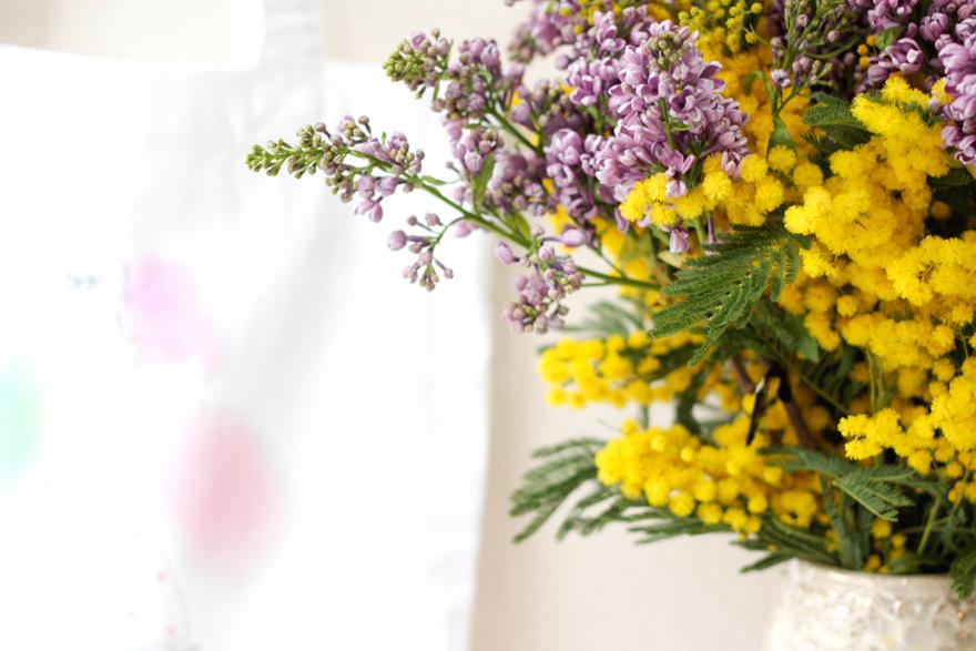 lilas-mimosa