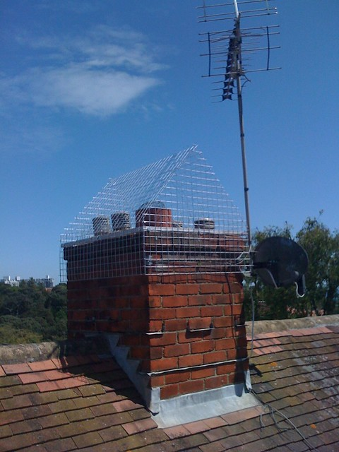 Chimney Cage