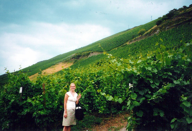 Bacharach vineyard