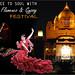 Enjoy the three day musical extravaganza with Jodhpur flamenco and gypsy festival by Flywidus