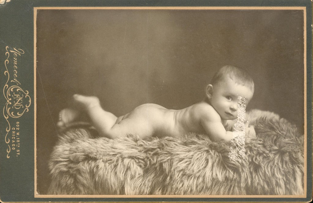 nemecek of chicago il baby of bearskin rug cabinet card - Bearskin Rug