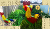 Chicken Dance Letter