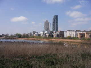 Reed Beds and New Builds, Woodberry Wetlands