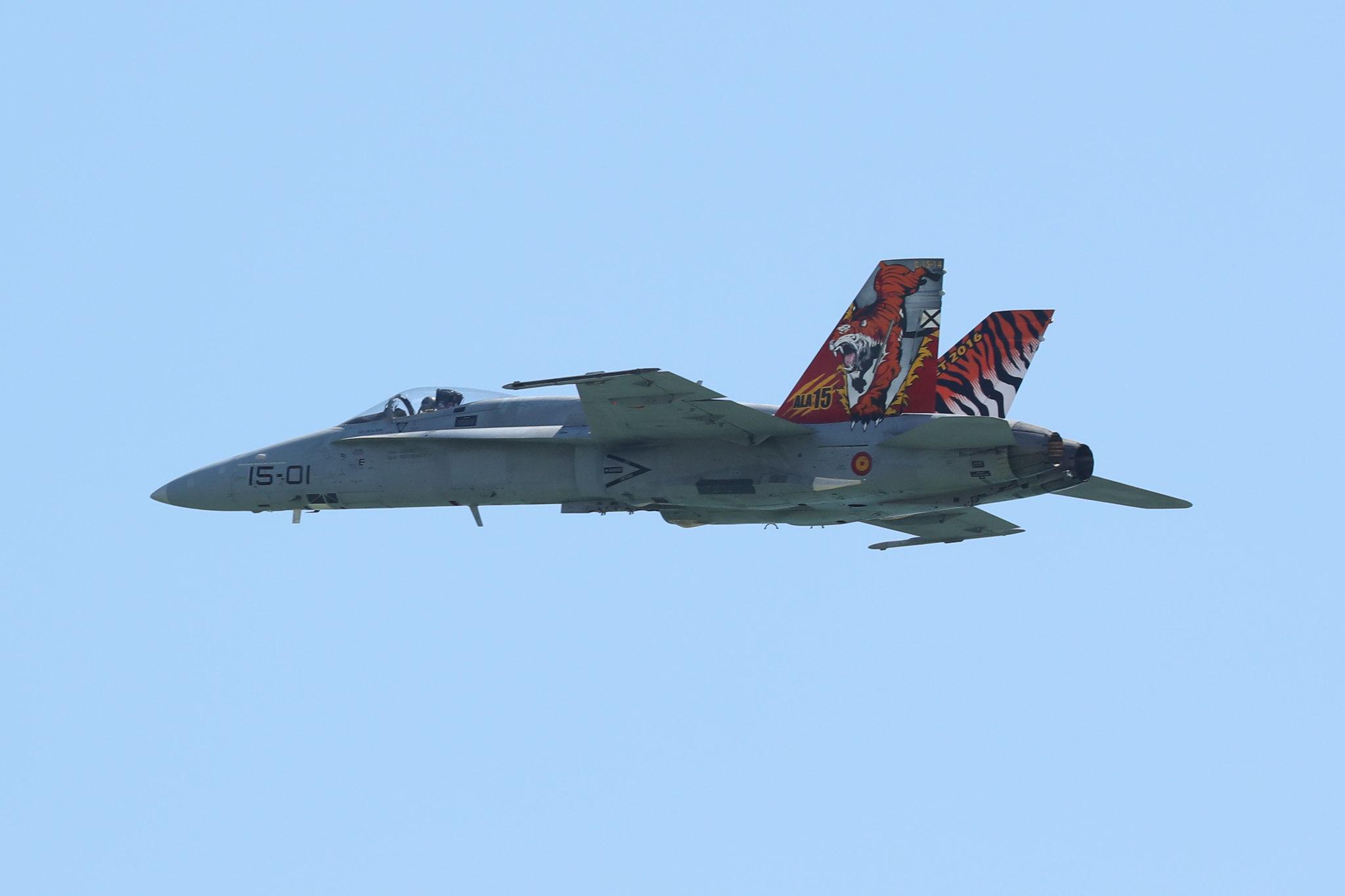 Mc Donnell Douglas F-18 Hornet (C.15)