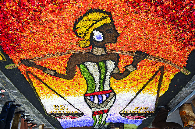 African Carpet, Corpus Christi, La Orotava, Tenerife
