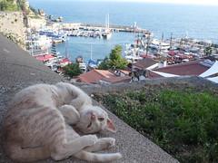 Roman Harbour, Antalya