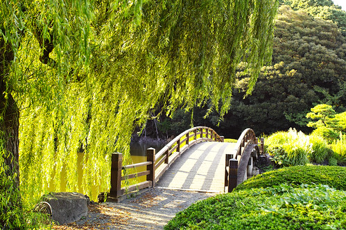 A wind, a willow, and a bridge  by leicadaisuki