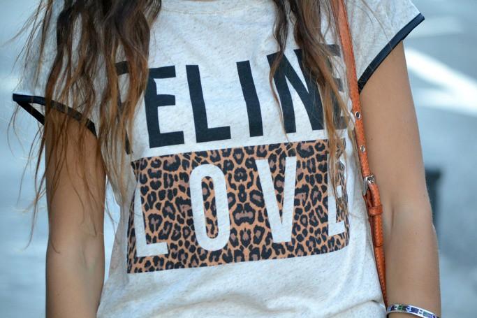 feline love stradivarius 3