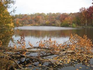 Van Cortlandt Lake